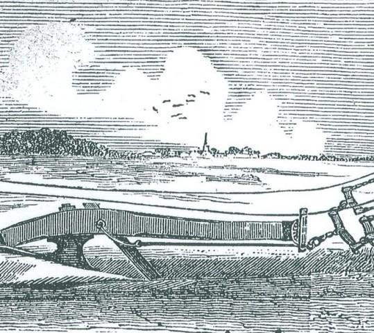 Daniel Island Horticulture