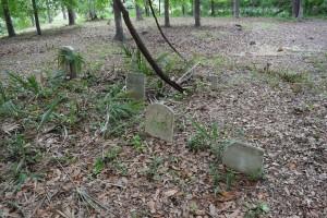 Alston Cemetery 2-2